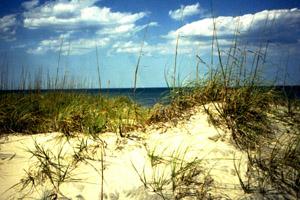 coast5